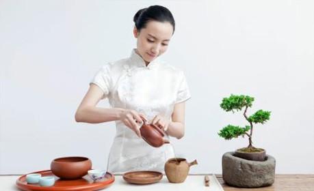 濮阳茶艺评茶班